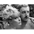 A Shot in the Dark Peter Sellers Elke Sommer Photo