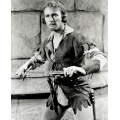 Adventures of Robin Hood Errol Flynn Photo