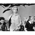 Birds Tippi Hedren Photo