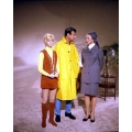 Cactus Flower Walter Matthau Ingrid Bergman Goldie Hawn Photo
