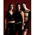 Charmed Holly Marie Combs Alyssa Milano Rose McGowan Photo