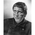 Curse of Frankenstein Christopher Lee Photo
