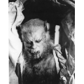 Curse of the Werewolf Oliver Reed Photo