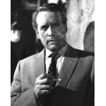Danger Man Patrick McGoohan Photo