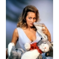 Dr No Ursula Andress Photo