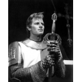 El Cid  Charlton Heston Photo