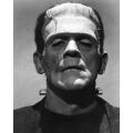 Frankenstein Boris Karloff Photo