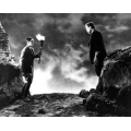 Frankenstein Boris Karloff Colin Clive Photo