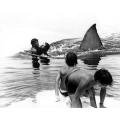 Jaws scene photo