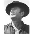 Magnificent Seven Brad Dexter  Photo