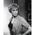 Psycho Janet Leigh Photo