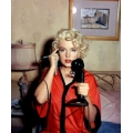 Some Like it Hot Marilyn Monroe Photo
