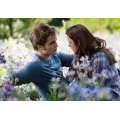 Twilight Exlipse Robert Pattinson Kirsten Stewart Photo