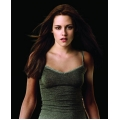 Twilight New Moon Kirsten Stewart Photo