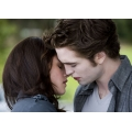 Twilight New Moon Robert Pattinson Kirsten Stewart Photo