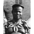 Zulu Photo